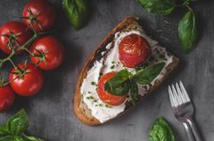 Bread cheese spread baked tomato Stock Photography