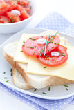 Bread with cheese and tomato Royalty Free Stock Photo