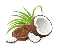 Bread with chocolate paste and coconut. Isolated on the white background. Bread with chocolate paste and coconut. Raster illustration, isolated on the white Royalty Free Stock Image