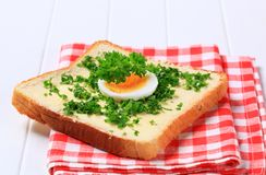 Bread with chopped parsley Royalty Free Stock Image