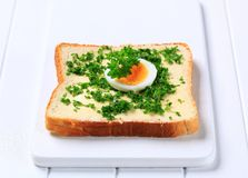Bread with chopped parsley Stock Images