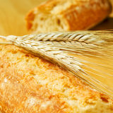 Bread. Closeup of ciabata bread and some wheat ears stock photos