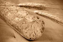 Bread. Closeup of a ciabata bread and some wheat ears on a wooden surface stock photography