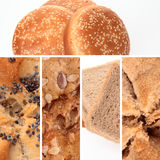 Bread Collage. A collage of different types of bread Royalty Free Stock Image