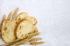 Bread composition. With grain on white fabric background Royalty Free Stock Image