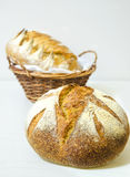 Bread. Composition with bread in wicker basket isolated on white royalty free stock image