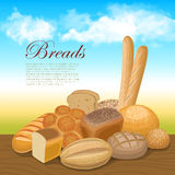 Bread concept background Stock Image