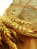 Bread and corn. Slices of multi grain bread with corn - wheat - like decoration stock photography