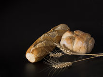 Bread and corns Stock Images