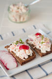 Bread with cottage cheese. Radish and chives Stock Photography