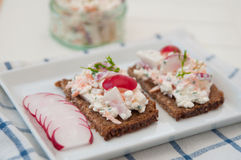 Bread with cottage cheese. Radish and chives Stock Photos