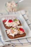 Bread with cottage cheese. Radish and chives Royalty Free Stock Photography