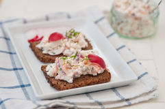 Bread with cottage cheese. Radish and chives Royalty Free Stock Image