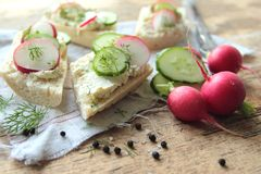 Bread with cottage cheese and radish. Sandwich with cottage cheese and fresh radish and cucumber in herbs Stock Image