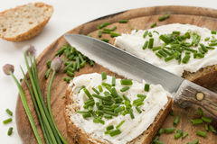Bread with cream cheese and chives. Whole grain bread slices with cream cheese, green chopped chives. peeper and salt on a wood cutting board Stock Image