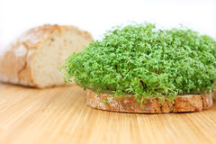 Bread with cress Stock Photography