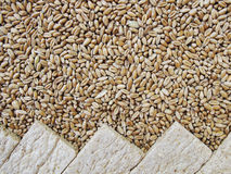 Bread crisps and grains of wheat Stock Images