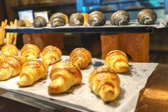 Bread and Croissant Arrange Royalty Free Stock Images