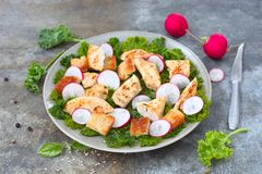 Bread crumb salad. Chicken bread crumb salad with radish slices on a plate royalty free stock photos