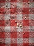 Bread crumbs on red and white checkered tablecloth Stock Image