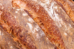 Bread Crust Texture Royalty Free Stock Photo