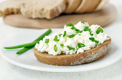 Bread with curd cheese and green onion Stock Photo