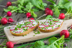 Bread with Curd Cheese, Radishes and Chive on Wooden Board on ol Royalty Free Stock Images