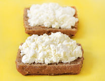 Bread with curd cheese Royalty Free Stock Photo