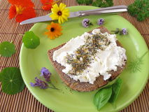 Bread and curd with spices and flowers salt Royalty Free Stock Photos