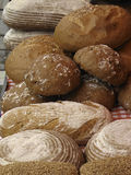 Bread. Different sorts of freshly baked bread Royalty Free Stock Images