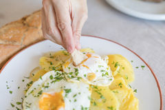 Bread diping into yolk of fried egg with potatoes Stock Photography