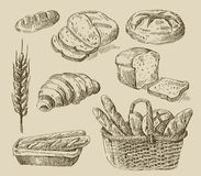 Bread doodle. Vector hand drawn food sketch and bread doodle Royalty Free Stock Images