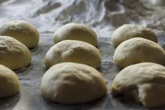 Bread dough balls ready for baking. With flour on the background stock image