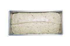Bread dough in loaf tin Stock Image