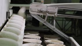 Bread dough making. Making bread. Knead the dough. Bread dough making. Preparation of bread for baking. Forming the dough using different equipment in the stock footage