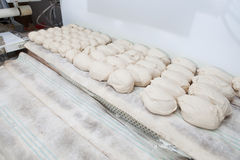 Bread dought pieces before fermentation Royalty Free Stock Image