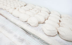 Bread dought pieces before fermentation Royalty Free Stock Images