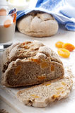 Bread with dried apricots Stock Photography