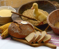 Bread And Duck Stock Photography