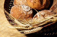 Bread and ears of barley Royalty Free Stock Photo
