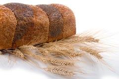 bread ears fresh wheat Стоковое Изображение RF
