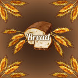 Bread with ears of rye Stock Image