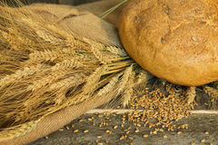 Bread with ears and wheat grain closeup Stock Images