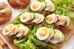 Bread with egg, radish and cucumber Royalty Free Stock Images