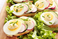 Bread with egg, radish and cucumber Stock Image