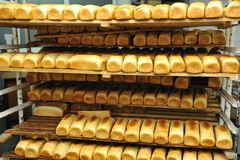 Bread factory production. Bread bakery food factory production with fresh products stock photography
