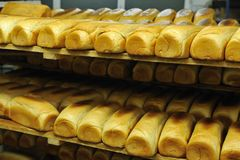 Bread factory production Royalty Free Stock Images