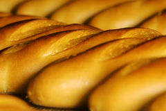 Bread factory production Royalty Free Stock Photo
