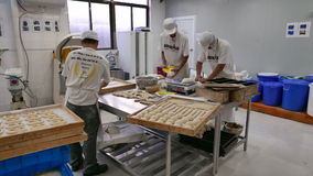 Bread Factory Workers Measuring and Cutting Dough. 3 bread factory workers measure and cut dough at a bakery in Nanjing, China stock footage