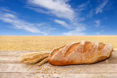 Bread on the field background Royalty Free Stock Photos